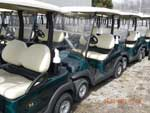 golf carts golfing electric cars gas carts motorized carts for sale